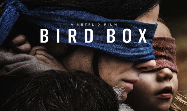 【BIRD BOX/バード・ボックス】Netflixオリジナル作品を今すぐ視聴